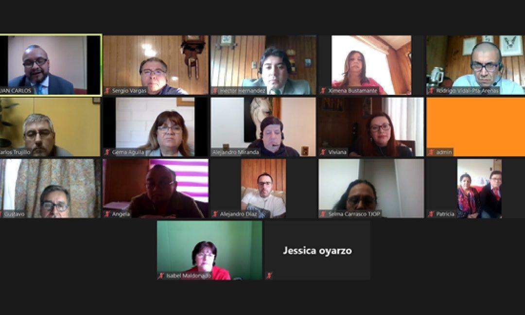 Juramento de nuevo directorio de ANEJUD Magallanes por Video-conferencia