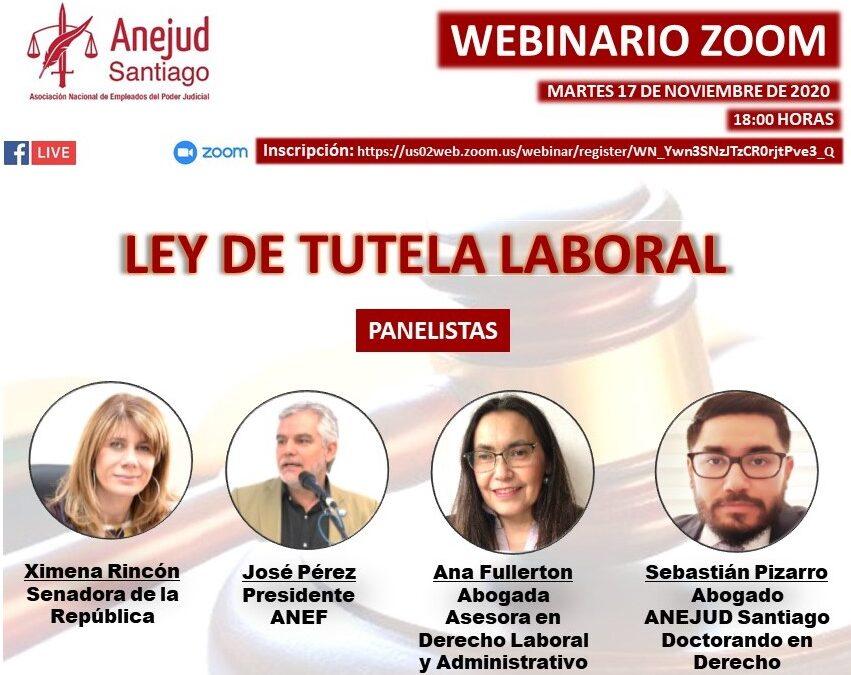 ANEJUD SANTIAGO REALIZARÁ WEBINARIO ZOOM SOBRE LEY DE TUTELA LABORAL ESTE MARTES